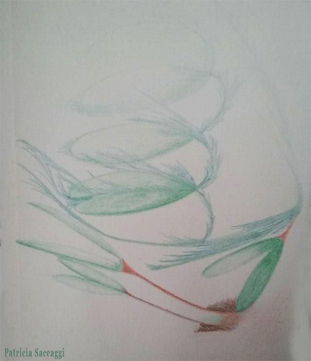 Dessin improvisé que j'ai fait aux crayons de couleur