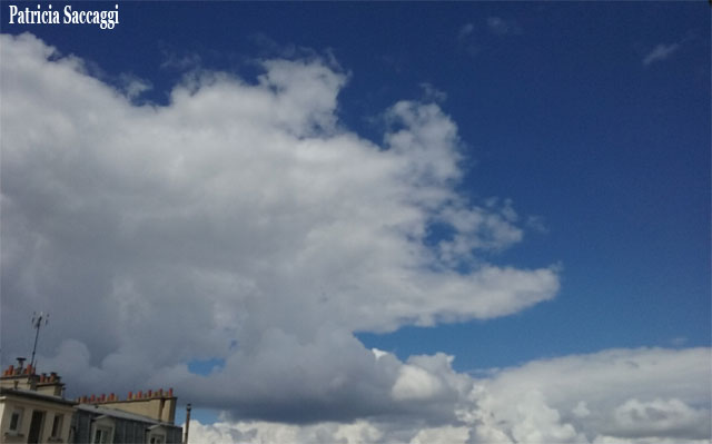 Photo du ciel avec têtes d'animal