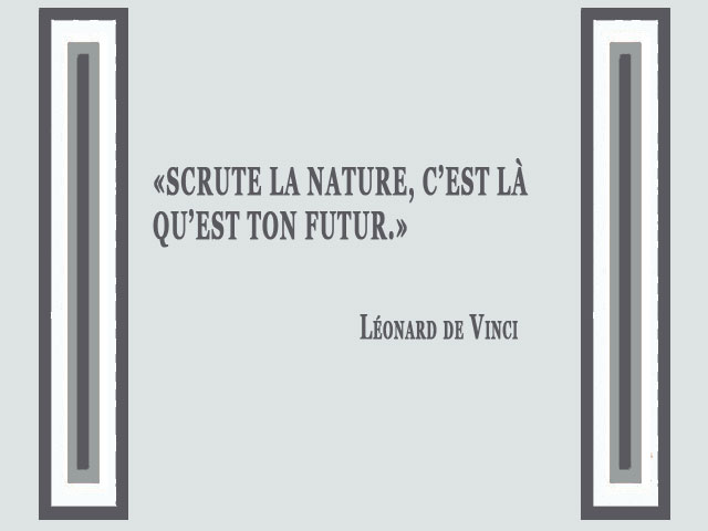 Citation de Léonard de Vinci