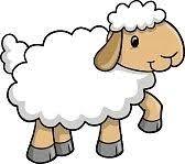 Image de mouton que j'ai prise via une banque d'images libre de droits