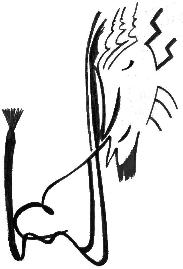Dessin abstrait, que j'ai fait au stylo et qui illustre l'onglet plume de mon blog.