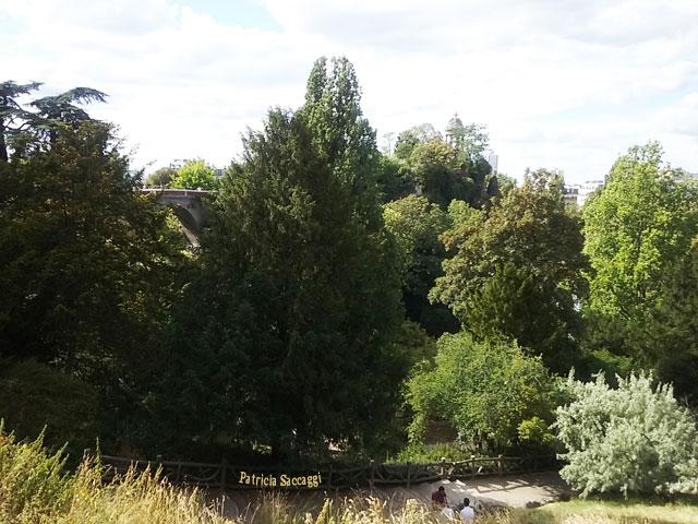 Photo que j'ai prise de jolis feuillus, camaïeu de ces arbres du parc des Buttes-Chaumont.